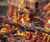 Best Survival Fire Starter
