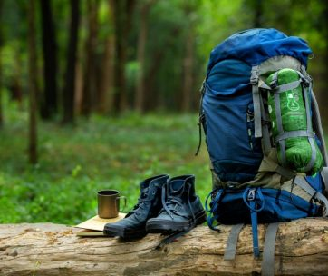 sport shoes and backpack color blue on the timber in the forest,camping concept,Nature Education.