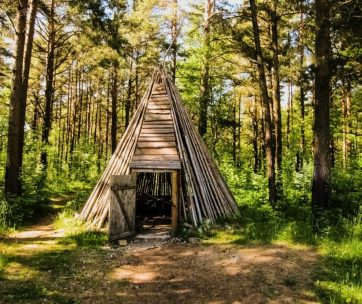 A tipi made with wooden boards inside the European forest, shelter for the night.